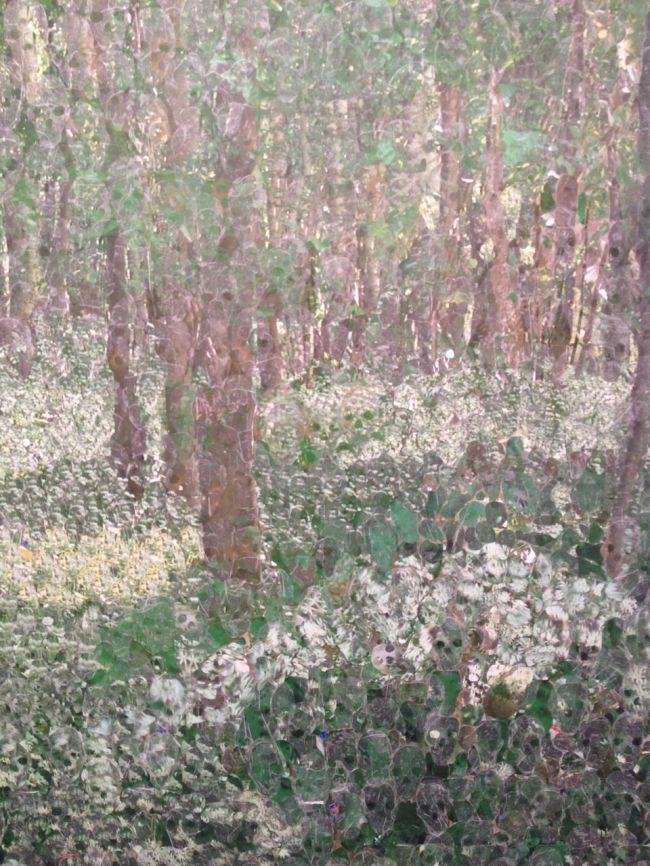 Landscape of Silence, Azade Köker, 2010