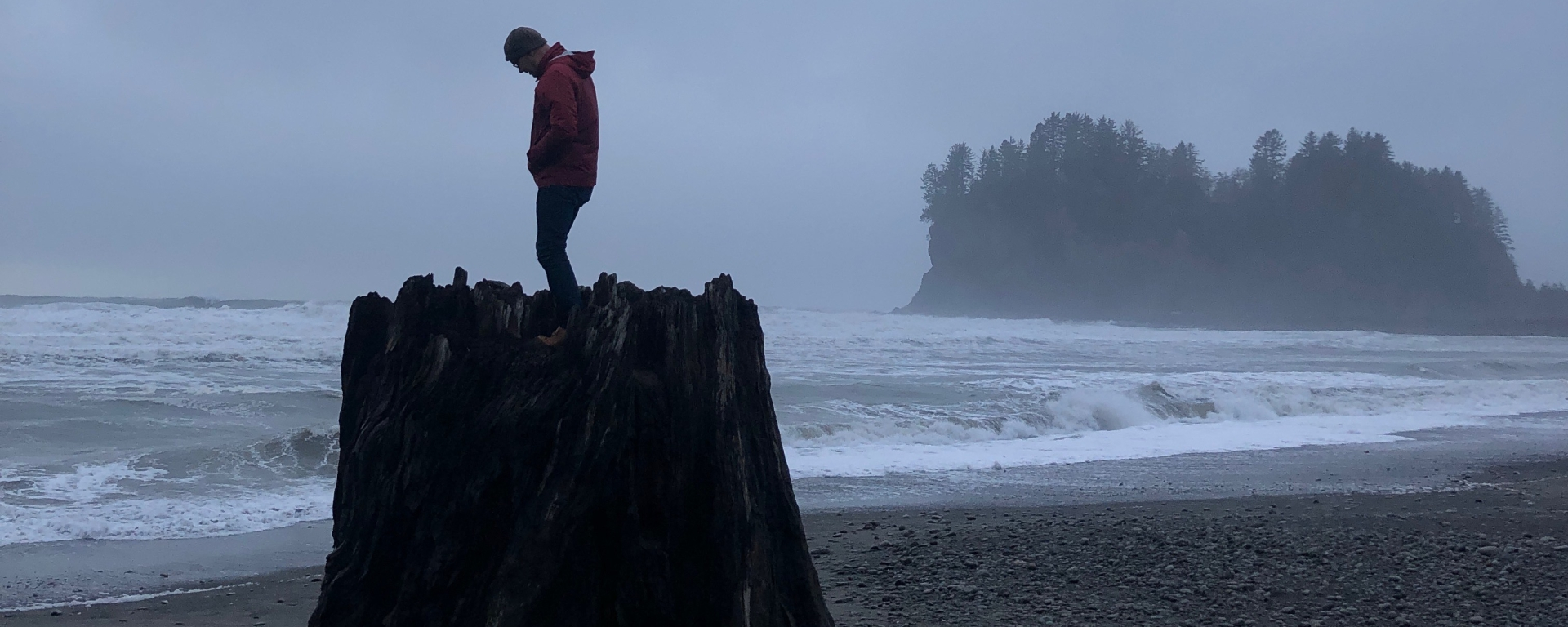 Artist Ray Monde standing on a giant stump at La Push, Washington